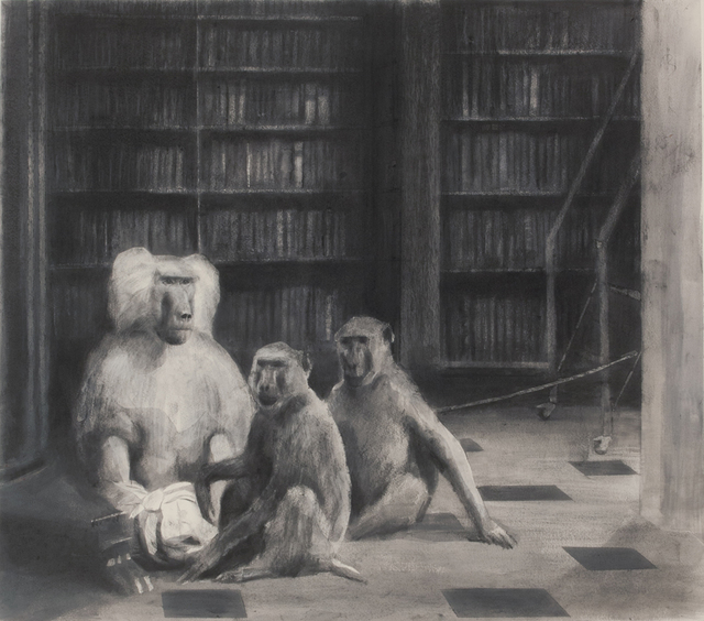 Miguel Branco, 'Untitled (The Library) #23', 2015, Jeanne Bucher Jaeger