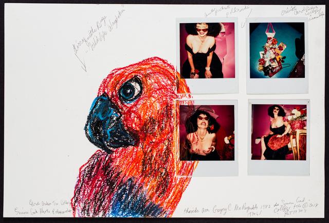 , 'Autoportrait 1970s/1980 Avec Perroquette Rouge wildlife Station,' 2018, Track 16 Gallery