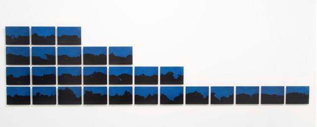, 'Variations on a Homogeneous Landscape,' 2006, Mor Charpentier