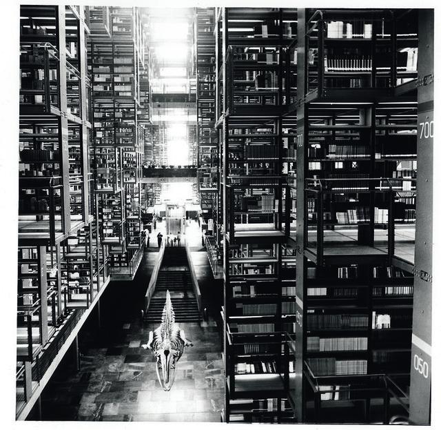 Tomás Casademunt, 'BV VI, serie Biblioteca Vasconcelos', 2007, Photography, Pigmentos sobre papel algodon, le laboratoire