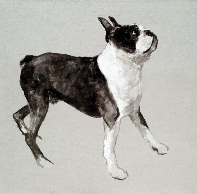 , 'Boston Terrier,' 2013, Dog & Horse Fine Art