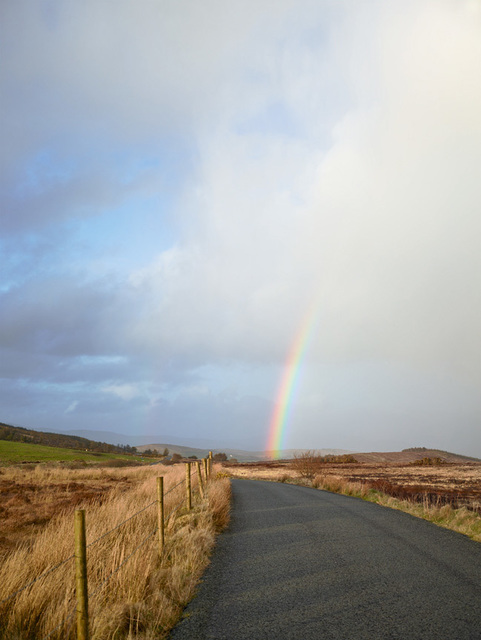 , 'Road, Co. Donegal, 2012,' 2012, Anthony Reynolds Gallery