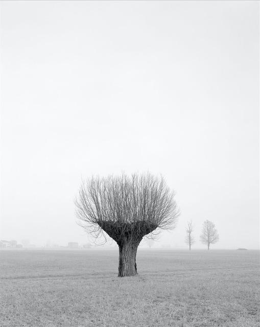 , 'Senza titolo, dalla Serie Questa Pianura,' 2004, Alberto Peola