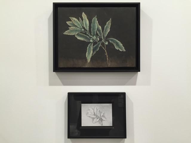 , 'These are still flowers - Dorischer Wandschmuck,' 1908-2013, Tang Contemporary Art