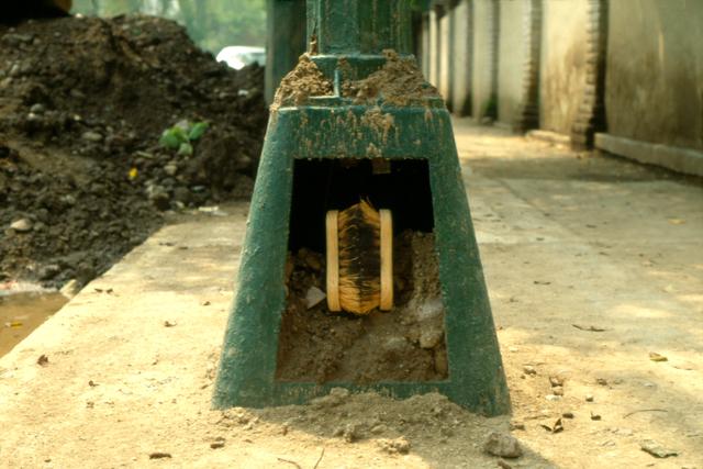 Gabriel Orozco, 'Brushes in Post (Cepillos en el poste)', 1991, Marian Goodman Gallery