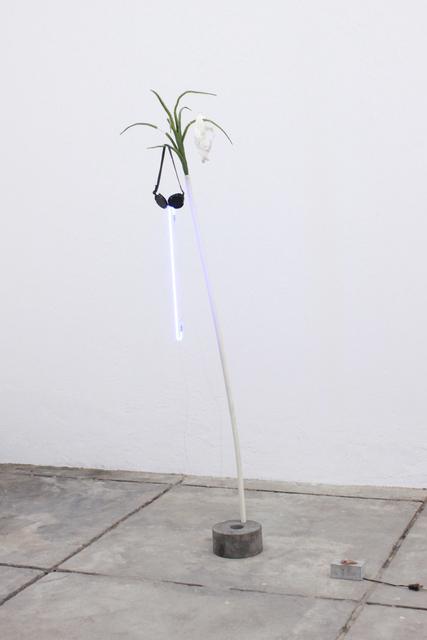 , 'V from the series Hipótesis del equilibrio local,' 2018, Galería OMR