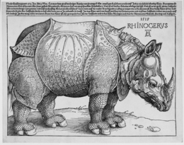 Albrecht Dürer, 'Rhinocerus', AD 1515, Drawing, Collage or other Work on Paper, Print, British Museum