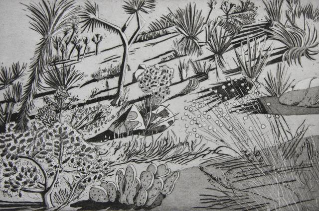 , 'Joshua Tree #2,' 2017, Asher Grey Gallery