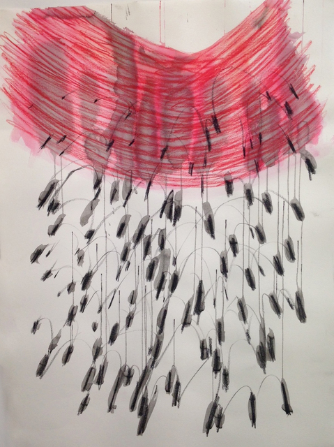, 'Drawing from Frilled Coquette,' 2015, .M Contemporary Sydney