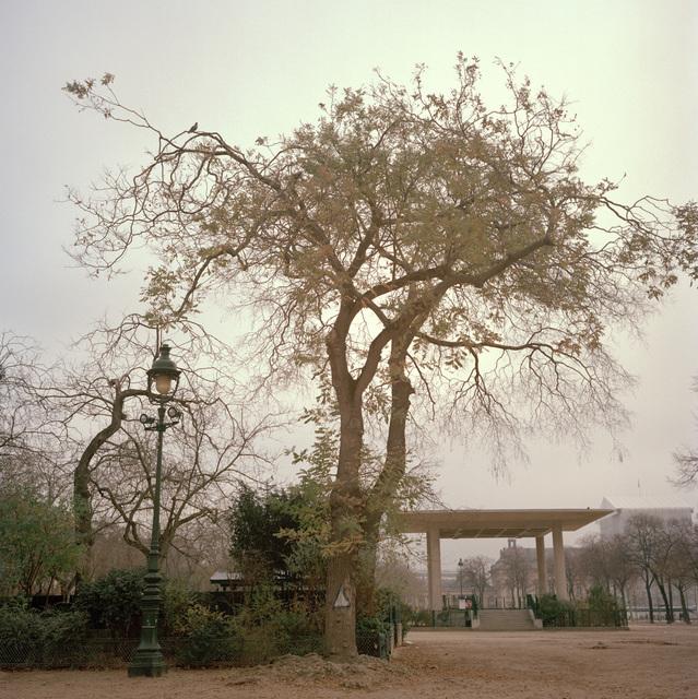 , 'Paris Fog III,' 2016, Oliver Sears Gallery
