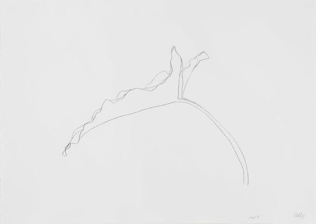 Ellsworth Kelly, 'Leaf XI', 1978, Susan Sheehan Gallery