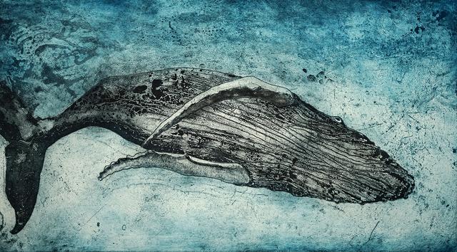 , 'Diving Humpback,' 2016, Candida Stevens