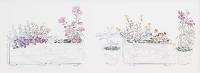 , 'Containers and Potted Plants in My House (自宅のコンテナと鉢植え ),' 2013, Take Ninagawa