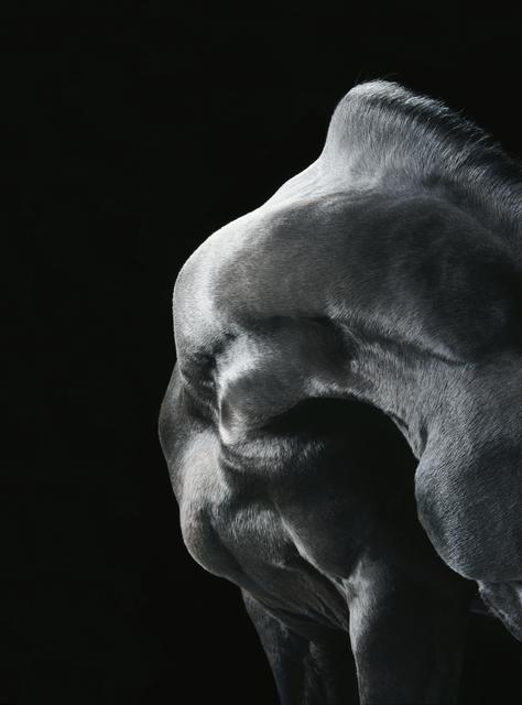 , 'Dante's Neck ,' 2010, Osborne Samuel