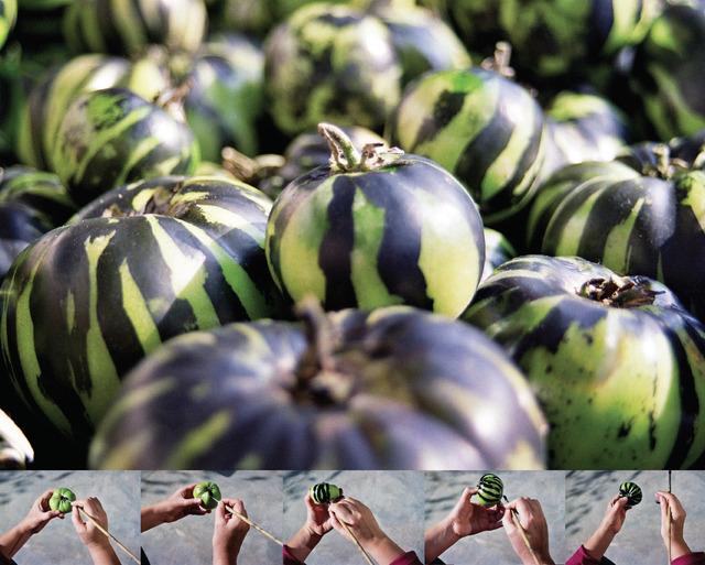 , 'I Prefer Watermelons,' 2002, Aspan Gallery