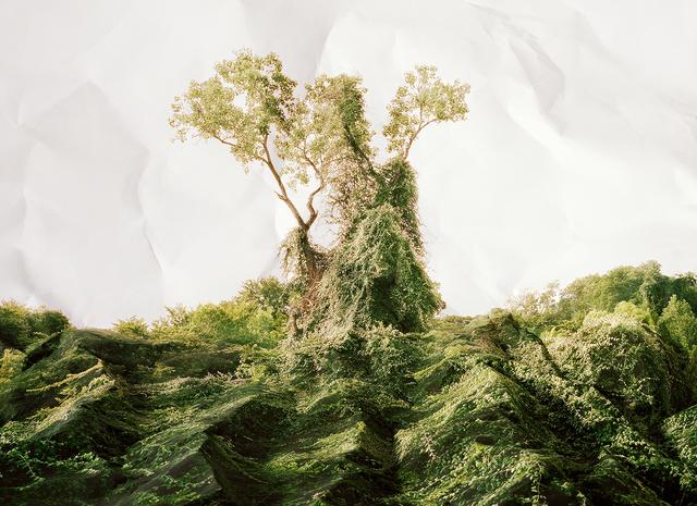 , 'Response to Print of Kudzu, Texas,' 2010, De Soto Gallery