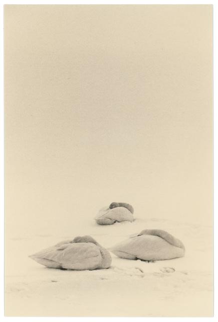 Yamamoto Masao, '1662, from Kawa=Flow', Etherton Gallery