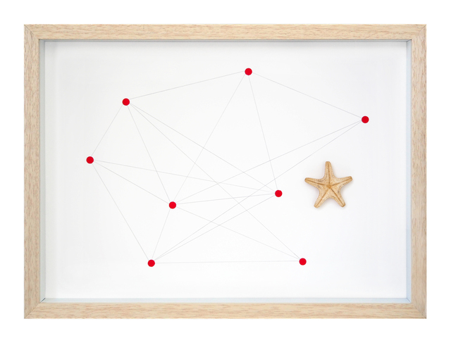 , 'Starfish Nº 1,' 2016, Lucia Mendoza