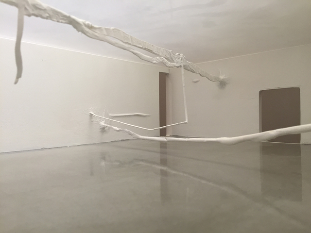 , 'Plexus,' 2015, Bruno David Gallery & Bruno David Projects