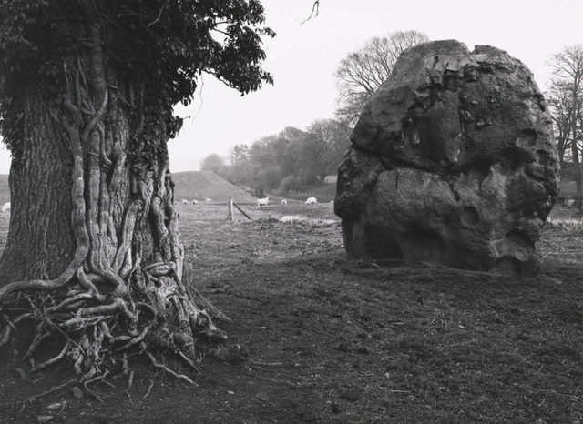 , 'Rock and Tree, Avebury Stone Circle, England,' 1967, Obscura Gallery