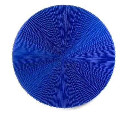 , 'Roda Azul,' 2014, Galeria Murilo Castro