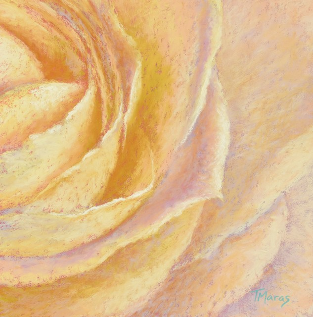 Tracey Maras, 'Rose Glow I', 2019, Springfield Art Association