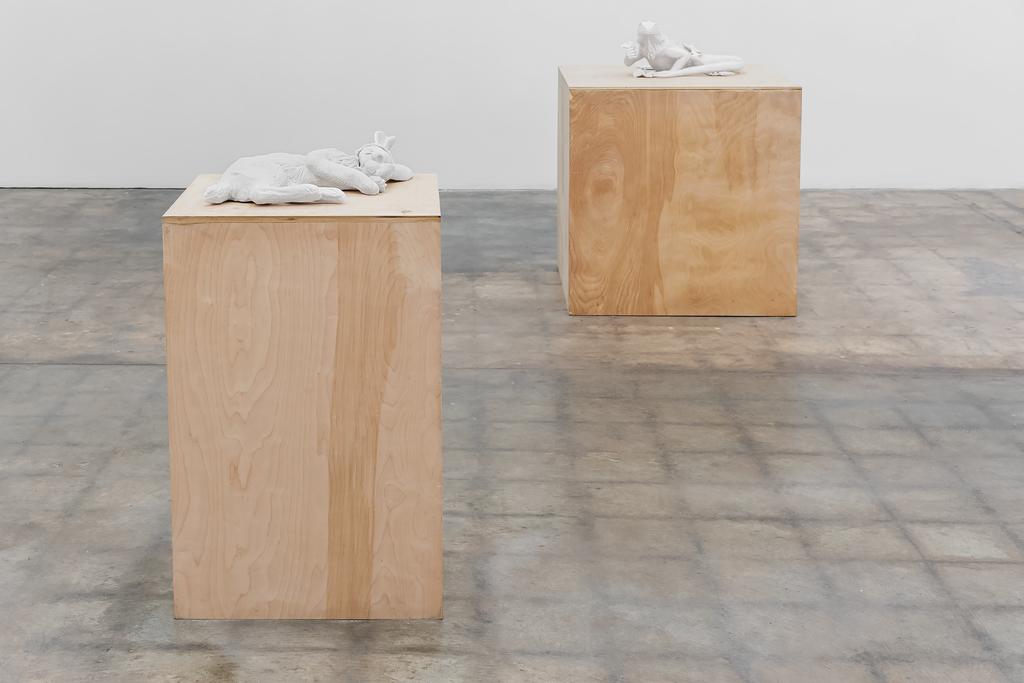 Installation Shot, Subversive Suburbia, Kate MacDowell