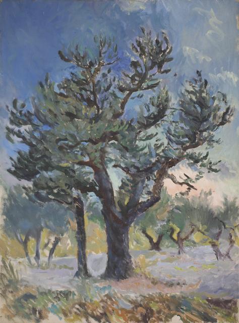 , 'Olive grove,' ca. 1968, Robert Eagle Fine Art