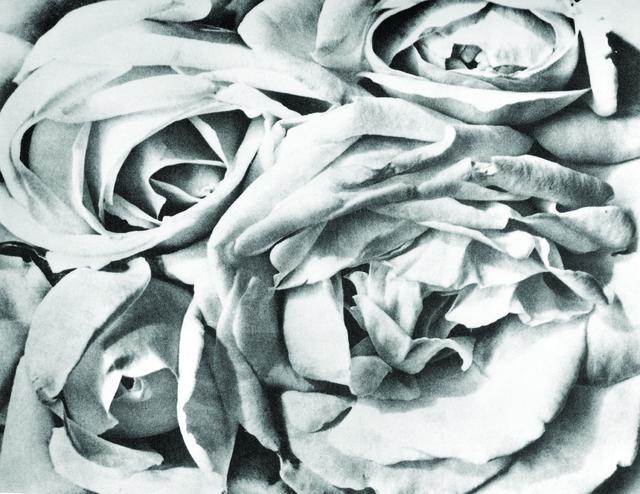 , 'Rosas,' 1924, Galeria Enrique Guerrero