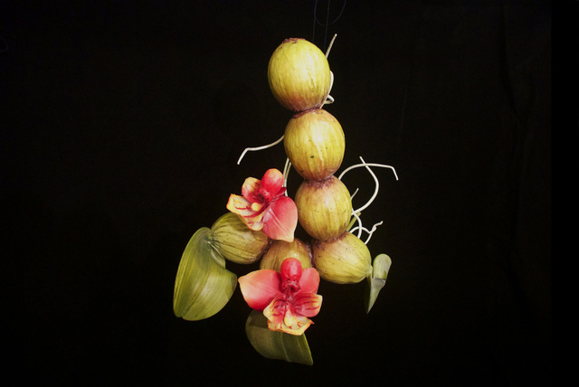 , 'END18 Bulbophyllum scabrum,' 2015, Chan + Hori Contemporary