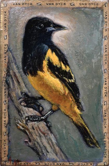 , 'Scott's Oriole / Van Dyke,' , Gail Severn Gallery