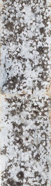 Cai Guo-Qiang, 'Traces of Vine', 2014, Cai Studio