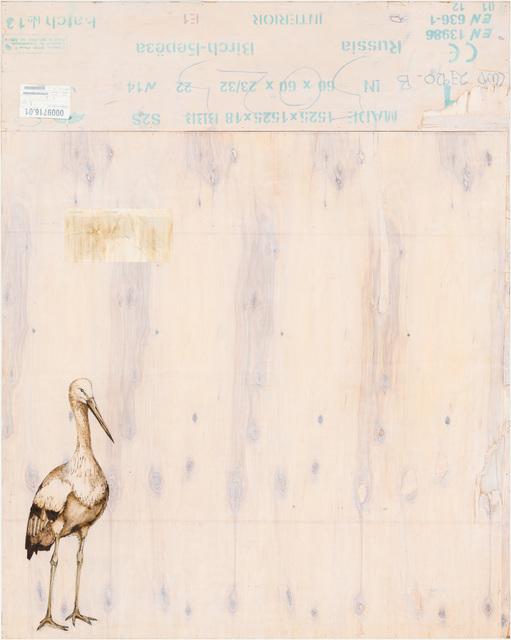 , 'EDNA: Oriental Stork,' 2015, Mark Moore Fine Art