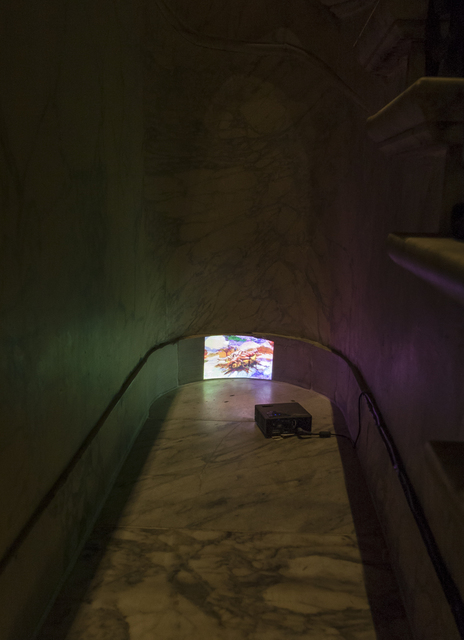 , 'Stumble,' 2009, International Manifesta Foundation
