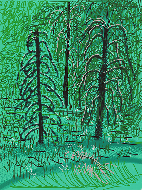 """, '""""Untitled No. 16"""" from """"The Yosemite Suite"""",' 2010, Annely Juda Fine Art"""