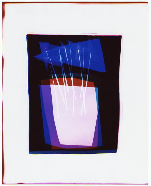 Liz Nielsen, 'Pendant Plant', 2020, Photography, Photogram on Fuji Lustre, Unique, Carrie Secrist Gallery