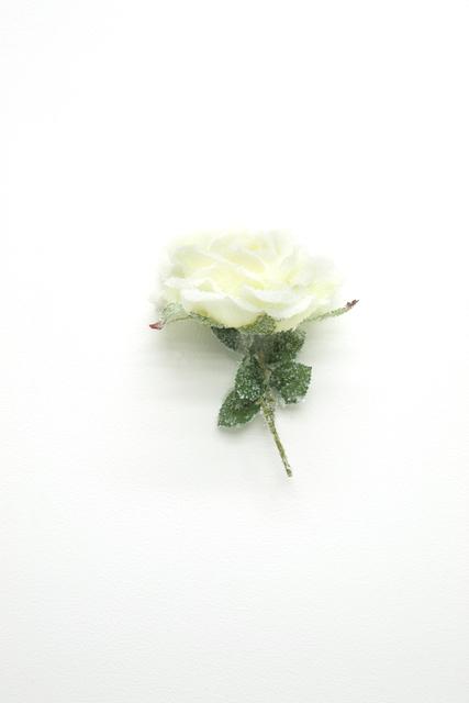 Laurent Pernot, 'Sans titre (Rose blanche)', 2019, Chez Mohamed