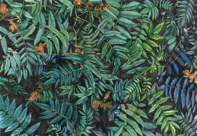 Adele van Heerden, '' Fernbeds' ', 2019, Art on Avenues