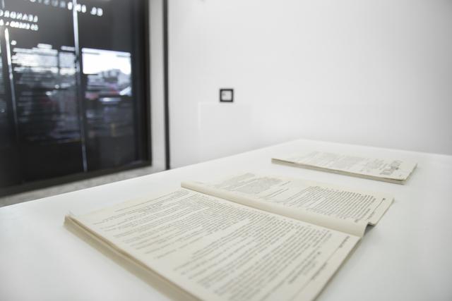 , 'EL INTRUSISMO DEL INSPECTOR,' 2019, CIBRIÁN