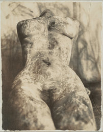 Untitled (Female Nude), New York City