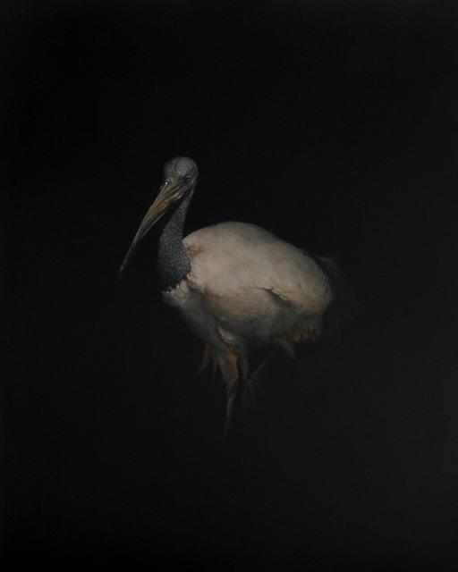 , 'Ibis,' 2010, Sloan Fine Art