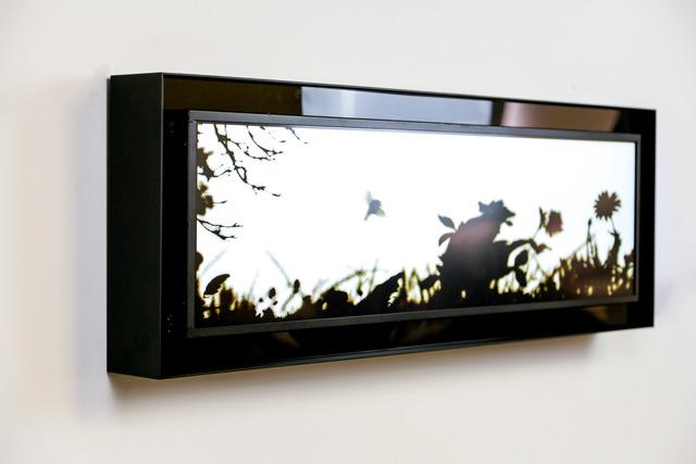 , 'Hummingbird,' 2014, Priveekollektie Contemporary Art | Design