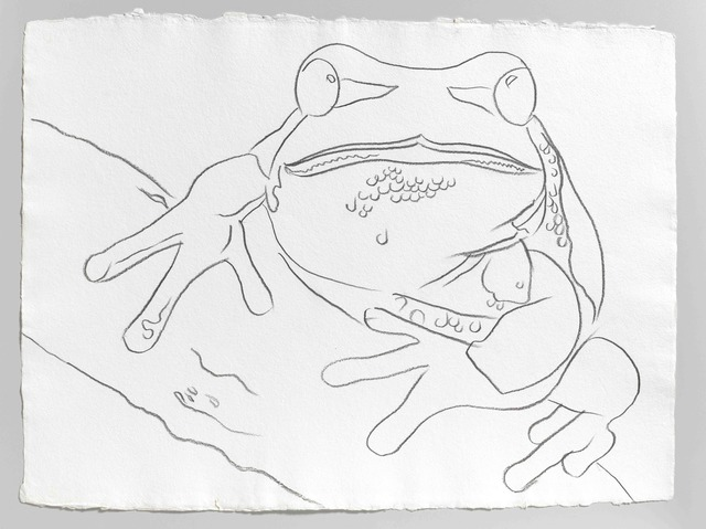 Andy Warhol, 'Endangered Species: Pine Barrens Tree Frog ', 1983, Galerie Thaddaeus Ropac