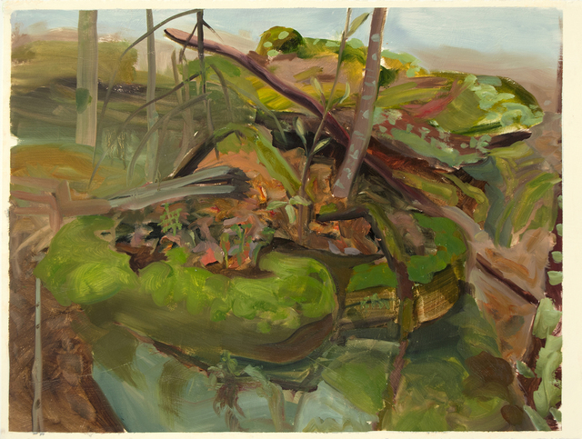 , 'Study for Mossy Rock,' 2012, Inman Gallery
