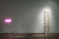 , 'Ladder of Bones,' 2010, Ronald Feldman Gallery
