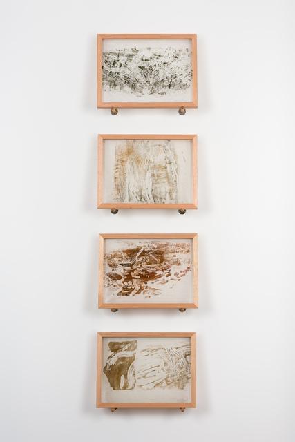 , 'Longicorn Beetle engravings,' 2019, Roslyn Oxley9 Gallery