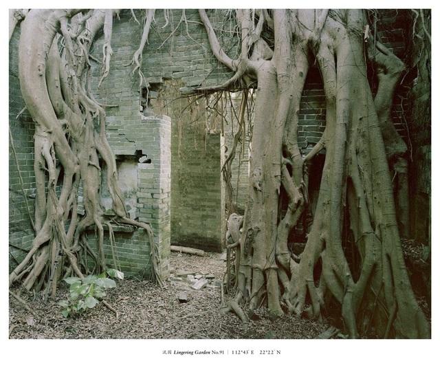 , 'Lingering Garden No.91,' 2016, Matthew Liu Fine Arts