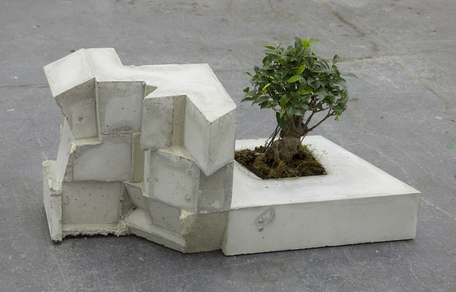 , 'Gebäude (Ficus),' 2012, Galerie nächst St. Stephan Rosemarie Schwarzwälder