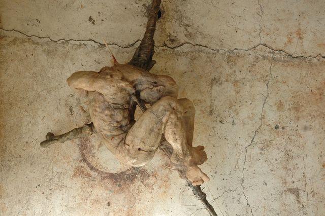 , 'Hombre varilla II,' 2007, Terreno Baldío
