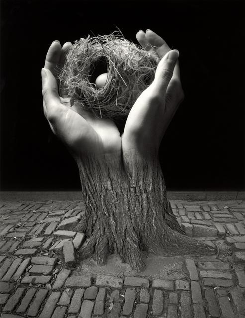 Jerry Uelsmann, 'Journey Into Night', 2006, Scheinbaum & Russek Ltd.